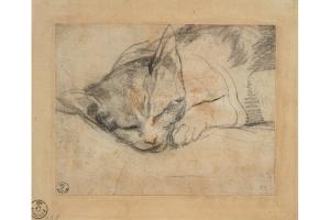 Study for a cat © Gabinetto dei Disegni e Stampe degli Uffizi, Florence, Ph. Scala, Florence, co. Ministero dei Beni Culturali