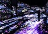 Flowers and People Dark teamLab START Art Fair