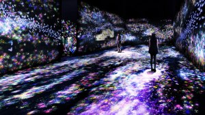 Flowers and People Dark teamLab START Art Fair